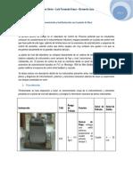 P1 - NivelLabProcesos.docx