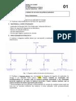 Pratica_01_2011_2.pdf