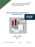 2012_2 Guia Practica Estadistica Informatica (1).pdf