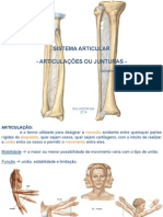 Aula 03 - Sistema Articular 1.pdf