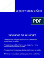6SEMINARIO  6-2013.pdf