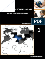 01-guia-niif.pdf
