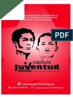 DECISIONES II CONGRESO JPSUV.pdf
