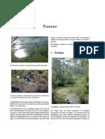 pantanos.pdf