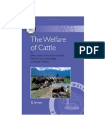 The%20Welfare%20of%20Cattle.pdf
