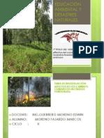 DS-008-2014-MINAM Huacachina.pdf