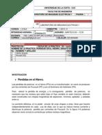 INVESTIGACION perdida del hierro.docx