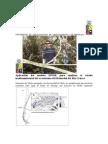 Mineria Chile Aspectos.doc