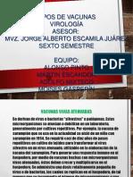 TIPOS DE VACUNAS.pptx