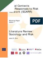Sociology Literature Review WP1.04 Zinn