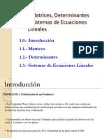 1.MatricesDeterminantesySistemasdeEcuaciones.pdf
