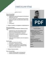 CURRICULUM VITAE_ACTUAL.pdf