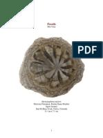 Fossils1Paleo.pdf