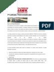 Pruebas Hidrostaticas.pdf