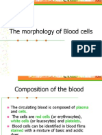 Blood cells morphology.ppt