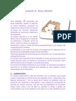 resumen de los brasos.docx