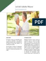 Aporte_Individual_Articulo_Laura_Amado (4).docx