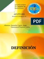 DIAPOSITIVAS DE APOPTOSIS FINAL.pptx