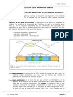 dna guia.pdf