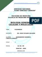 seminario 4 plasmidos.doc