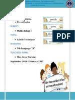 METHODOLOGY Labels Technique.docx