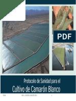 ProtocoloSanitario_FJNB.pptx