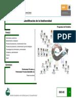 06+Identificación+biodiversidad (1).pdf
