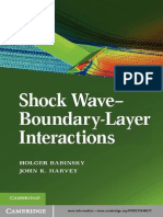 Shock Wave Boundary