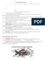 peixes anfibios e repteis apostila explicativa.docx