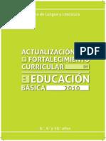 LIBRO LENGUA Y LITERATURA.pdf