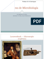 Copia de Estructura bacteriana.ppt