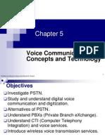 Voice communication concept