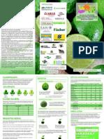 limão.pdf