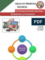 cambiosdelenvejecimientonormalanatmicoyfuncional-140323141153-phpapp02.pdf