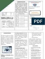 TRIPTICO DE COMPRENSORAS Y VOLADURAS DE ROCA.docx