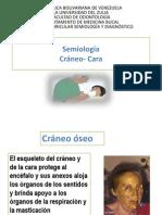 Clase 6  Semiologia Ana Rivero Cabeza y Cara  2011.pptx