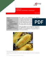 Informe de Actualización Biocarburantes.pdf