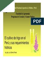 -biblioteca-exposiciones-Cultivo_de_trigo_y_sus_requerimientos_hibridos.pdf