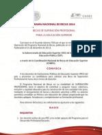 SUPERACION PROFESIONAL_1.pdf