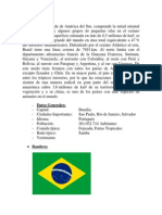 BRAZIL.docx