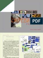 Seleccion de proyectos 2012.pdf