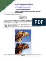 11-herramientas-de-ajuste.pdf
