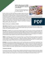 ACTIVO CORRIENTE.doc