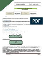 PO-OP-SG-6004 - Vaciado de Hormigon.docx