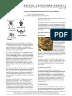 arañas montañesas.pdf