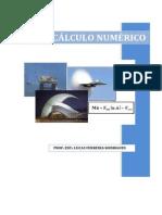 Apostila - Cálculo Numérico