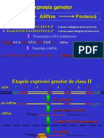 Translatie.pps