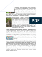 Cultivo y tabaco.docx