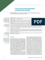Afectación de las redes neuronales atencionales durante el envejecimiento saludable.pdf