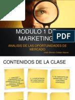 DIPLOMADO CLASE Nº1 - ANALISIS DE LAS OPORTUNIDADES DE MERCADO.ppt